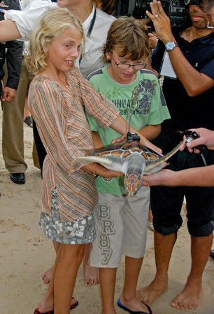 Kids release Turtles